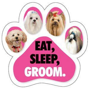 Space Pet Care - Pet Grooming, Pet Minding, Pet Sitting and Pet Walking
